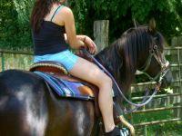 Sadie under saddle